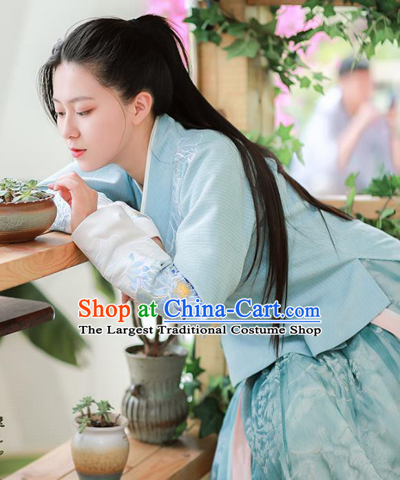 Chinese Ancient Civilian Female Embroidered Hanfu Dress Ming Dynasty Garment Traditional Young Lady Historical Costumes for Women