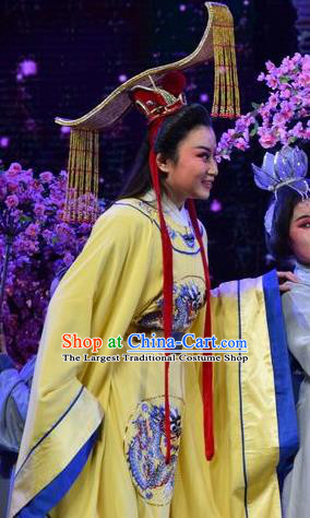 Madam Ruyi Chinese Shanxi Opera Emperor Li Zhi Apparels Costumes and Headpieces Traditional Jin Opera Young Male Garment Monarch Clothing