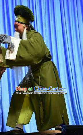 Fifteen Strings of Cash Chinese Shanxi Opera Laosheng Apparels Costumes and Headpieces Traditional Jin Opera Garment Old Man Clothing