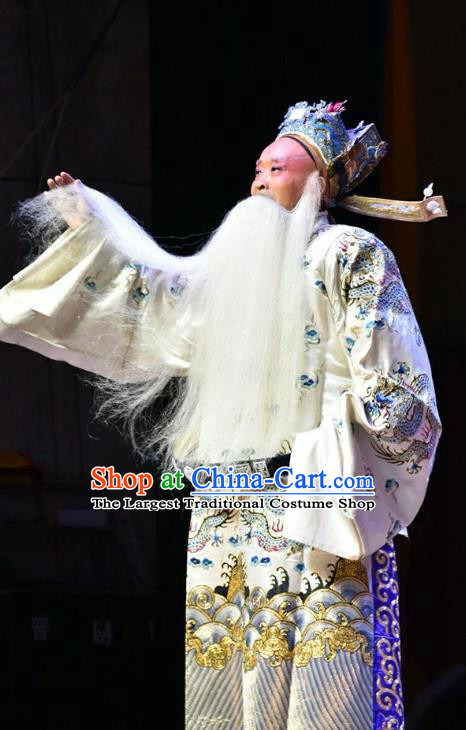 Fifteen Strings of Cash Chinese Shanxi Opera Laosheng Apparels Costumes and Headpieces Traditional Jin Opera Elderly Male Garment Old Official Clothing