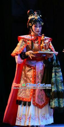 Chinese Jin Opera Woman Swordsman Garment Costumes and Headdress Fenyang King Traditional Shanxi Opera Martial Female Apparels Dress