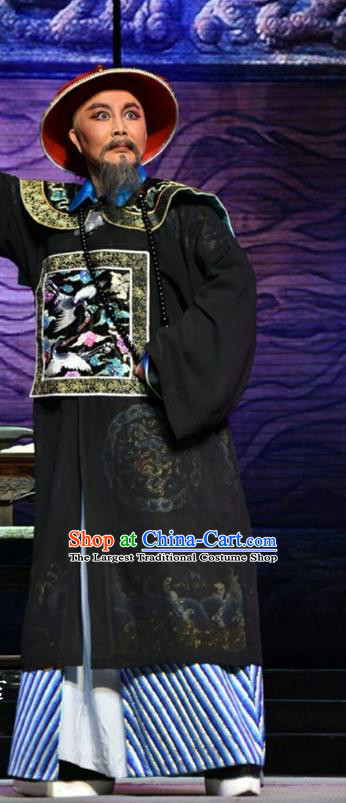 He Qing Hai Yan Chinese Shanxi Opera Qing Dynasty Governor Li Yumei Apparels Costumes and Headpieces Traditional Jin Opera Elderly Male Garment Official Clothing