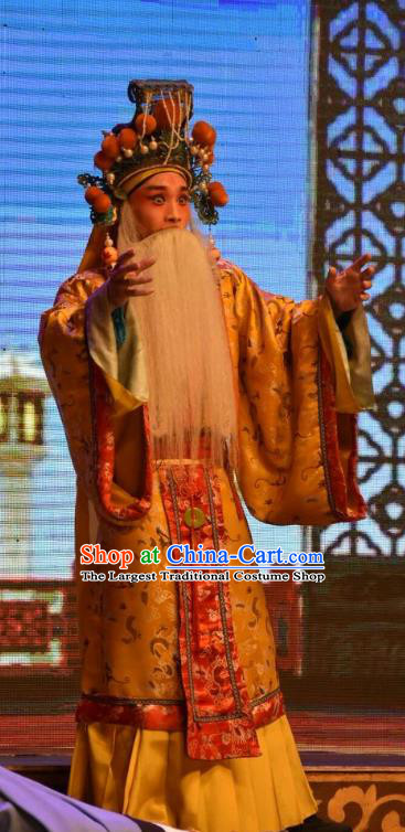 Shen Gong Qing Hun Chinese Shanxi Opera Old King Apparels Costumes and Headpieces Traditional Jin Opera Elderly Male Garment Lord Clothing