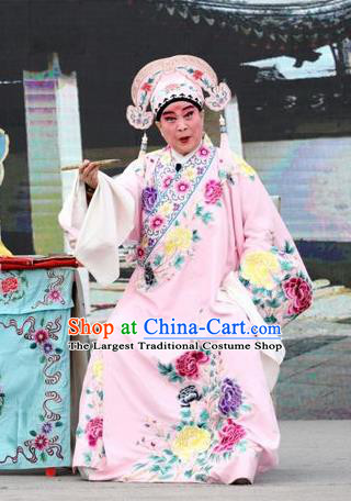 Shuang Luo Shan Chinese Shanxi Opera Young Male Apparels Costumes and Headpieces Traditional Jin Opera Xiaosheng Garment Scholar Xu Jizu Clothing