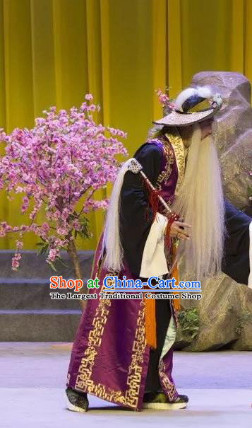 The Lotus Lantern Chinese Shanxi Opera Laosheng Apparels Costumes and Headpieces Traditional Jin Opera Taoist Garment Elderly Male Clothing