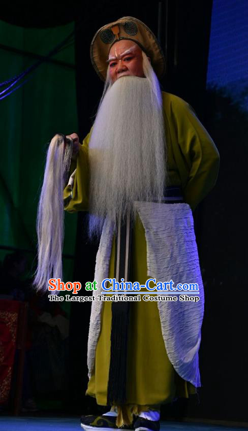 Wei Shui River Chinese Shanxi Opera Elderly Male Apparels Costumes and Headpieces Traditional Jin Opera Laosheng Garment Fisher Jiang Shang Clothing