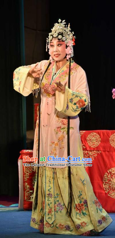 Chinese Clapper Opera Rich Lady Garment Costumes and Headdress The Crimson Palm Traditional Bangzi Opera Hua Tan Apparels Actress Wang Qianjin Dress