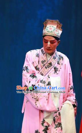 Story About A Wall Chinese Lu Opera Scholar Apparels Costumes and Headpieces Traditional Shandong Opera Clown Garment Zhang Erguai Pink Robe Clothing