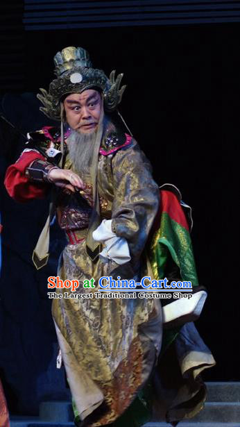 Hua Long Dian Jing Chinese Lu Opera Elderly Man Chang He Apparels Costumes and Headpieces Traditional Shandong Opera Laosheng Garment General Clothing