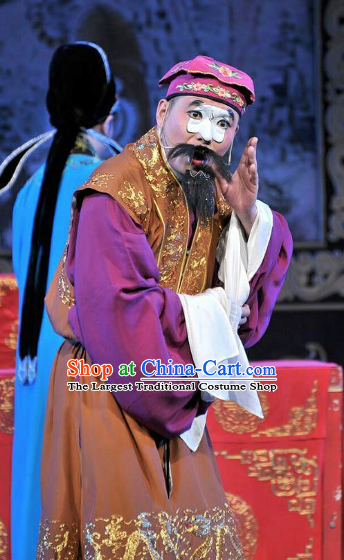 Forced Marriage Chinese Lu Opera Clown Apparels Costumes and Headpieces Traditional Shandong Opera Chou Role Garment Adviser Clothing