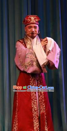 Forced Marriage Chinese Lu Opera Elderly Man Apparels Costumes and Headpieces Traditional Shandong Opera Clown Garment Adviser Clothing