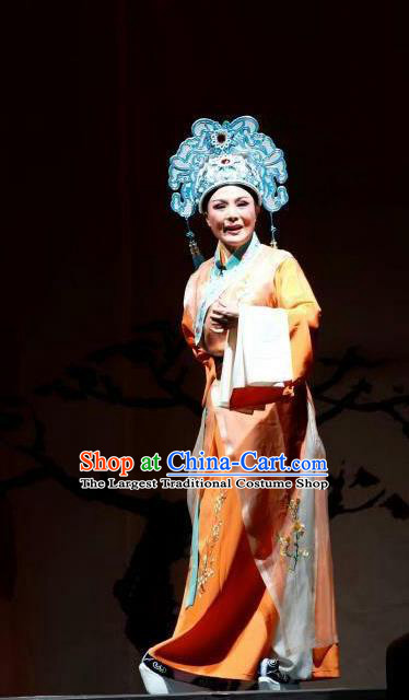 Chang Bai Han Ru Chinese Lu Opera Scholar Apparels Costumes and Headpieces Traditional Shandong Opera Niche Garment Xiaosheng Clothing