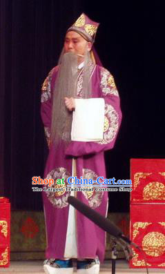 The Romance of Hairpin Chinese Qu Opera Laosheng Apparels Costumes and Headpieces Traditional Henan Opera Elderly Male Garment Landlord Qian Liuxing Clothing
