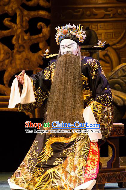 Yu Zhou Feng Chinese Hubei Hanchu Opera Prime Minister Zhao Gao Apparels Costumes and Headpieces Traditional Han Opera Jing Role Garment Elderly Male Clothing