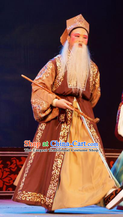 Hua Deng An Chinese Hubei Hanchu Opera Ministry Councillor Apparels Costumes and Headpieces Traditional Han Opera Elderly Male Garment Landlord Clothing