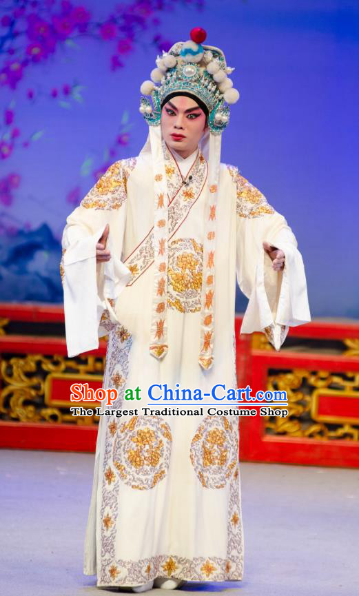 The Princess in Distress Chinese Guangdong Opera Young Male Yelu Junxiong Apparels Costumes and Headpieces Traditional Cantonese Opera Wusheng Garment Clothing