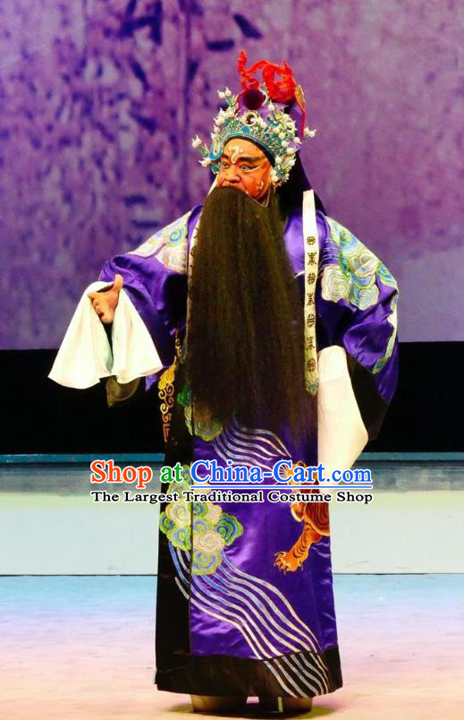 Hua Jian Ji Chinese Guangdong Opera General Apparels Costumes and Headpieces Traditional Cantonese Opera Jing Garment Elderly Male Clothing