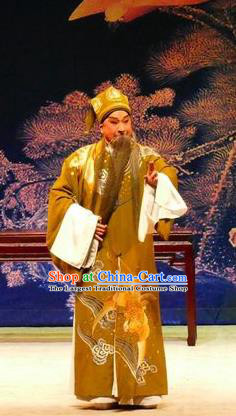 Hua Jian Ji Chinese Guangdong Opera Elderly Male Apparels Costumes and Headpieces Traditional Cantonese Opera Laosheng Garment Prime Minister Clothing