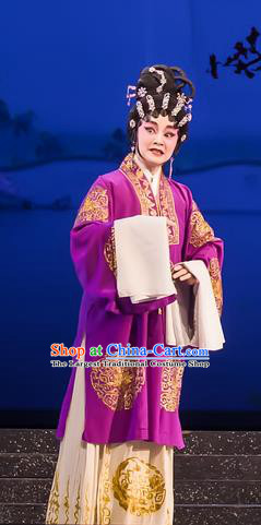 Chinese Cantonese Opera Rich Female Garment The Romance of Hairpin Costumes and Headdress Traditional Guangdong Opera Dame Apparels Landlord Shiva Dress
