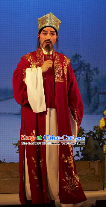 Legend of Lun Wenxu Chinese Guangdong Opera Ministry Councillor Apparels Costumes and Headpieces Traditional Cantonese Opera Laosheng Garment Landlord Clothing
