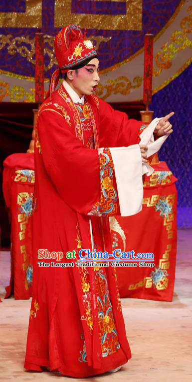 Liu Yi Delivers A Letter Chinese Guangdong Opera Young Man Apparels Costumes and Headpieces Traditional Cantonese Opera Xiaosheng Garment Bridegroom Clothing