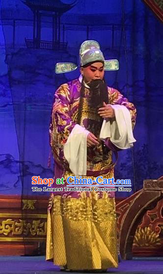 Story of the Violet Hairpin Chinese Guangdong Opera Grand Commandant Apparels Costumes and Headpieces Traditional Cantonese Opera Elderly Male Garment Clothing