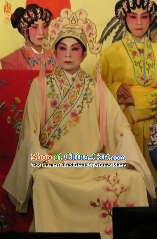 Hua Tian Ba Xi Chinese Guangdong Opera Scholar Bian Ji Apparels Costumes and Headpieces Traditional Cantonese Opera Xiaosheng Garment Gifted Youth Clothing