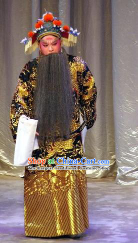 Story of the Violet Hairpin Chinese Guangdong Opera Elderly Official Apparels Costumes and Headpieces Traditional Cantonese Opera Laosheng Garment Minister Clothing