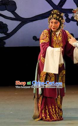Chinese Cantonese Opera Elderly Female Garment Yuan Yang Sword Costumes and Headdress Traditional Guangdong Opera Dame Apparels Pantaloon Dress