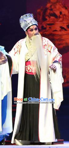 Gao Emperor of Han Chinese Guangdong Opera Elderly Male Apparels Costumes and Headpieces Traditional Cantonese Opera Laosheng Garment Lord Liu Bang Clothing