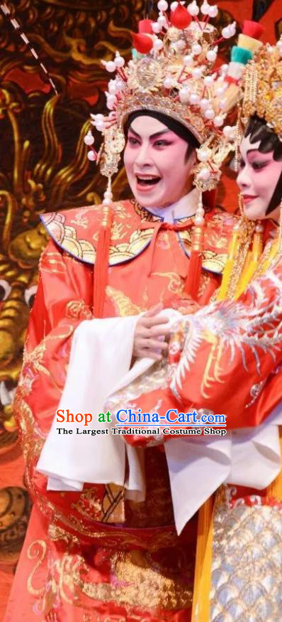 Chinese Guangdong Opera Xiaosheng Apparels Costumes and Headpieces Traditional Cantonese Opera Young Man Wei Jianhun Garment Crown Prince Clothing