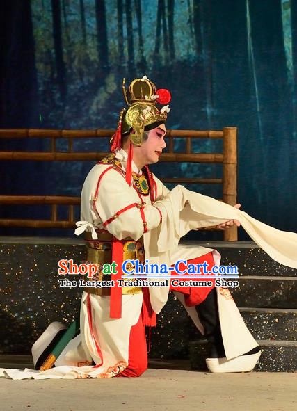 Chinese Guangdong Opera General Wei Tuo Apparels Costumes and Headwear Traditional Cantonese Opera Martial Male Garment Wusheng Clothing