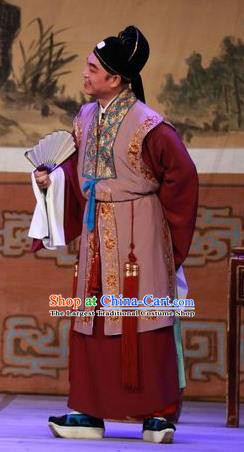 The Mad Monk by the Sea Chinese Guangdong Opera Rich Man Apparels Costumes and Headwear Traditional Cantonese Opera Merchant Garment Clothing