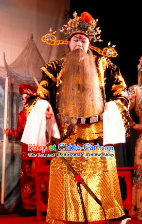 Love in the Red Plum Chinese Guangdong Opera Jing Apparels Costumes and Headwear Traditional Cantonese Opera Elderly Male Garment Treacherous Official Jia Sidao Clothing