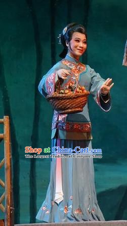 Chinese Cantonese Opera Country Woman Garment Zhuang Yuan Lin Zhaotang Costumes and Headdress Traditional Guangdong Opera Young Female Apparels Mistress Dress