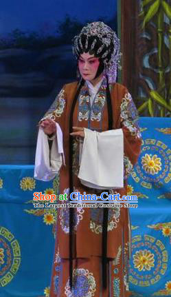 Chinese Cantonese Opera Noble Dame Garment Wu Nv Bai Shou Costumes and Headdress Traditional Guangdong Opera Elderly Female Apparels Mistress Dress