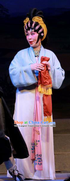 Chinese Cantonese Opera Country Woman Garment Fifteen Strings of Cash Costumes and Headdress Traditional Guangdong Opera Female Apparels Dress
