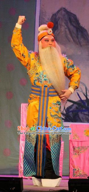 Chinese Guangdong Opera Duke Guo Ziyi Apparels Costumes and Headwear Traditional Cantonese Opera Elderly Male Garment Laosheng Clothing