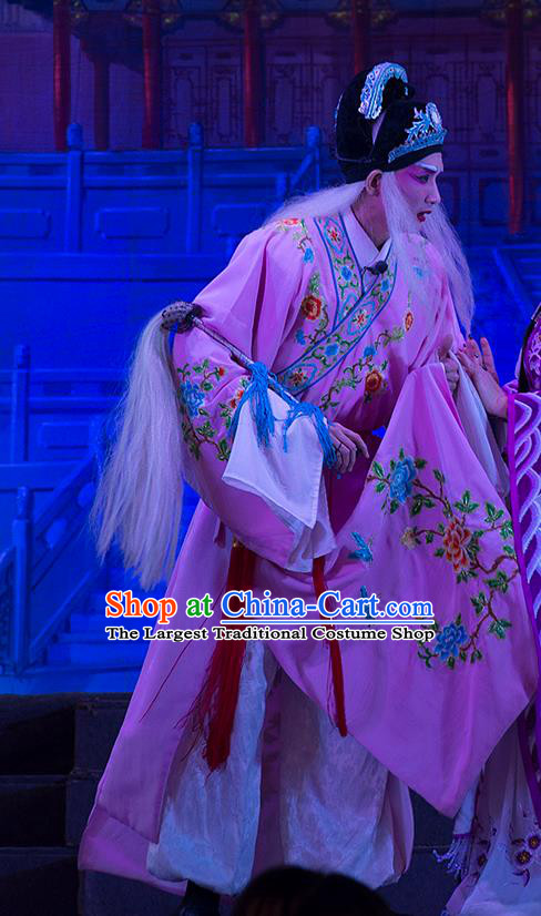 Wu Suo Dong Gong Chinese Guangdong Opera Eunuch Apparels Costumes and Headwear Traditional Cantonese Opera Palace Servant Garment Clothing
