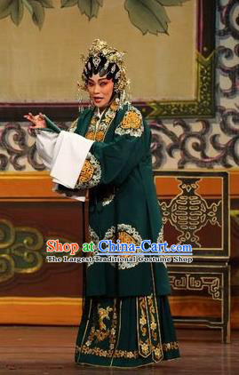 Chinese Cantonese Opera Rich Woman Garment Feng Guan Meng Costumes and Headdress Traditional Guangdong Opera Mistress Apparels Dame Dress