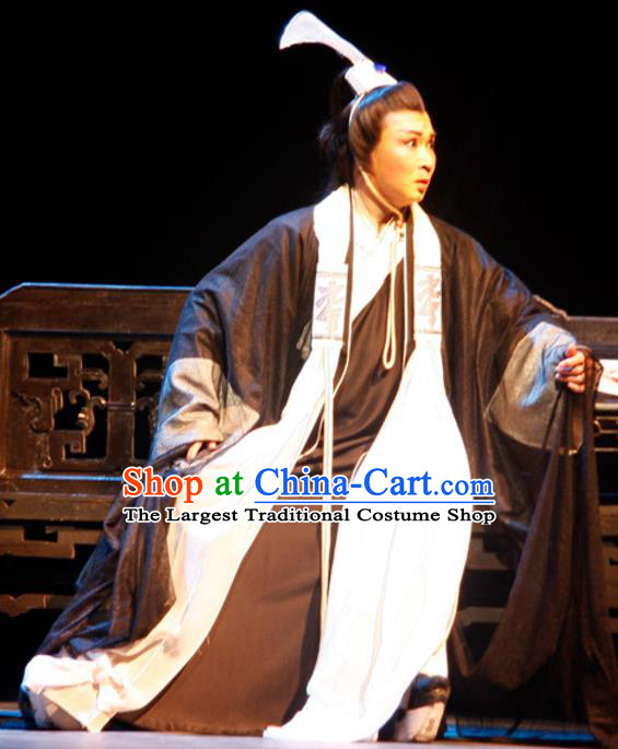Chinese Traditional Ming Dynasty Scholar Apparels Costumes Historical Drama Ancient Gifted Youth Garment Wen Zhong Clothing and Headwear