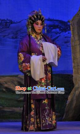 Chinese Cantonese Opera Dame Garment Da Nao Mei Zhi Fu Costumes and Headdress Traditional Guangdong Opera Actress Apparels Middle Age Female Purple Dress