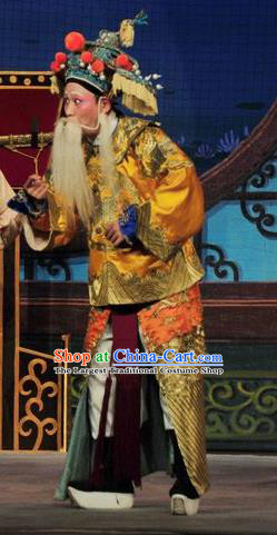Fan Lihua Return Tang Chinese Guangdong Opera Old Man Apparels Costumes and Headwear Traditional Cantonese Opera Elderly General Garment Duke Cheng Yaojin Clothing