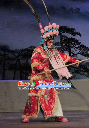 Chinese Cantonese Opera Wudan Garment Fan Lihua Return Tang Costumes and Headdress Traditional Guangdong Opera Tao Ma Tan Apparels Female General Red Dress