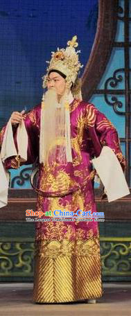 Fan Lihua Return Tang Chinese Guangdong Opera Elderly Male Apparels Costumes and Headwear Traditional Cantonese Opera Duke Garment Lord Clothing