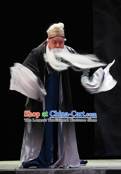 Cao Min Song Shijie Chinese Sichuan Opera Civilian Apparels Costumes and Headpieces Peking Opera Highlights Old Scholar Garment Elderly Male Clothing