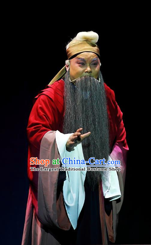 Cao Min Song Shijie Chinese Sichuan Opera Elderly Male Apparels Costumes and Headpieces Peking Opera Highlights Garment Old Scholar Clothing