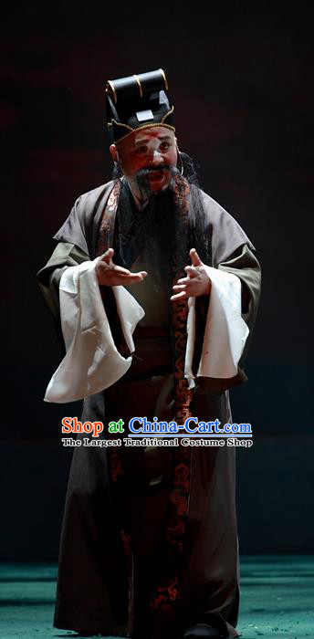 Cao Min Song Shijie Chinese Sichuan Opera Clown Apparels Costumes and Headpieces Peking Opera Highlights Chou Role Garment Old Man Clothing