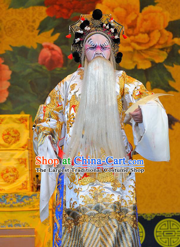 Sui Chao Luan Chinese Sichuan Opera Official Yang Lin Apparels Costumes and Headpieces Peking Opera Highlights Elderly Male Garment Painted Role Clothing
