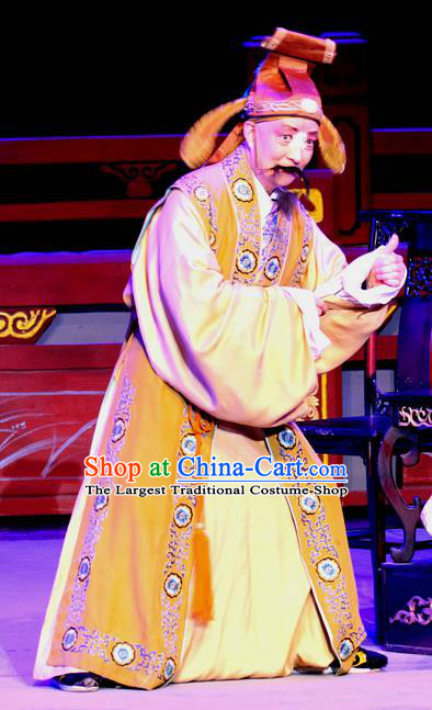 Fu Gui Rong Hua Chinese Sichuan Opera Landlord Apparels Costumes and Headpieces Peking Opera Highlights Elderly Male Garment Clown Clothing